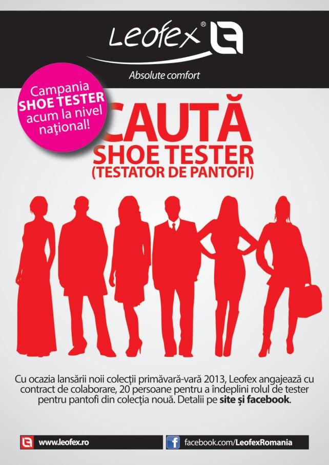 vizual-testatori-pantofi-national