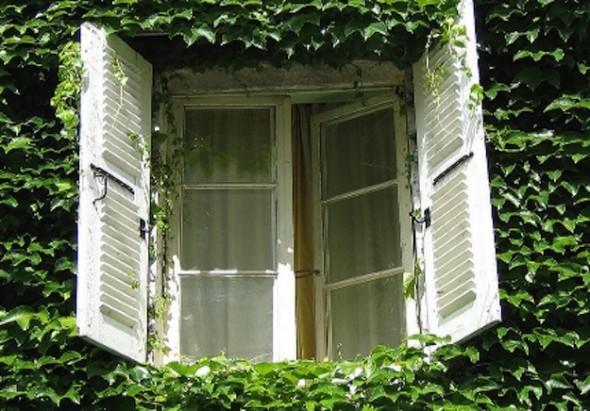 stire-9-iul-ferestre