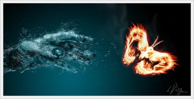 apa-foc