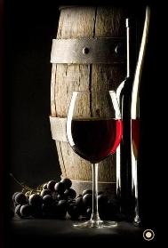 vinuri ploiesti