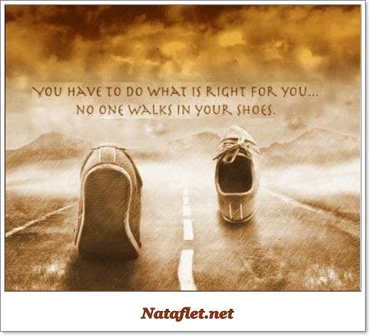 www.nataflet.net