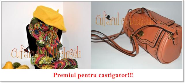 premiul1